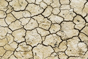 drought-711651_1280