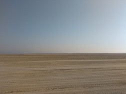The desolate desert