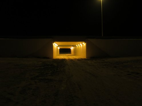 Camel Underpass
